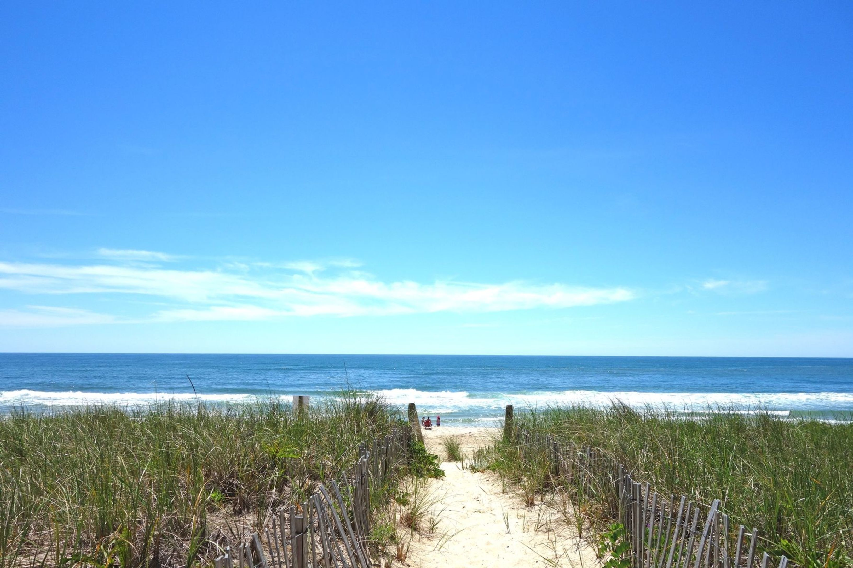 Amagansett Dunes, New York